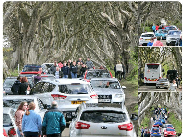 Busy bank holiday crowds at the Dark Hedges