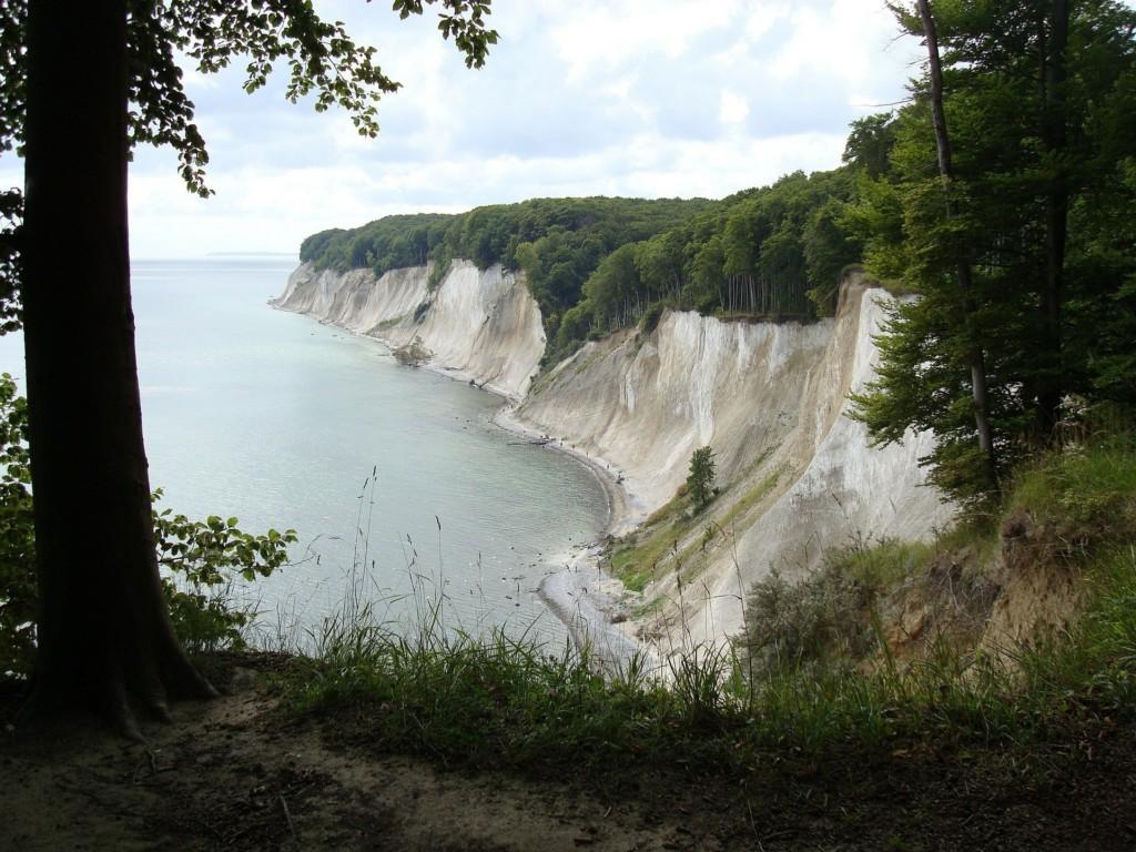 Rugen White Cliffs