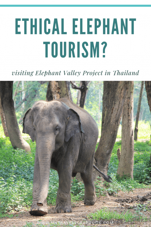 Guide to the Elephant Valley in Chiang Rai, Thailand. Many so called sanctuaries in Thailand are not ethical. Yet can animal tourism ever be ethical? Elephant Valley Thailand Project is doing its best to maintain high animal welfare standards. You can read all about visiting the sanctuary in the blog post and decide for yourself whether you believe it is ethical or not. 