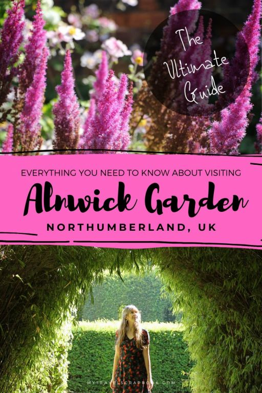 Ultimate Guide to visiting Alnwick Garden. Alnwick Garden is a wonderful garden in Northumberland, UK. The vast gardens which include a bamboo maze, poison garden and cherry blossom grove are all worth exploring. If you are travelling with kids you will want to visit the Serpent Garden. Click on the post to help plan your trip to Northumberland and you day at Alnwick Garden.