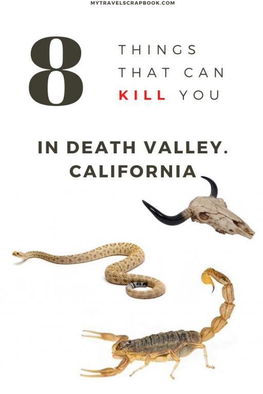 Death Valley can be a dangerous place! There are things that can KILL you in Death Valley! Whilst it is unlikely that you will die during your visit to Death Valley there are a few things you should know before you visit Death Valley. Here is a survival guide to Death valley on how not to die in the national park in California!
