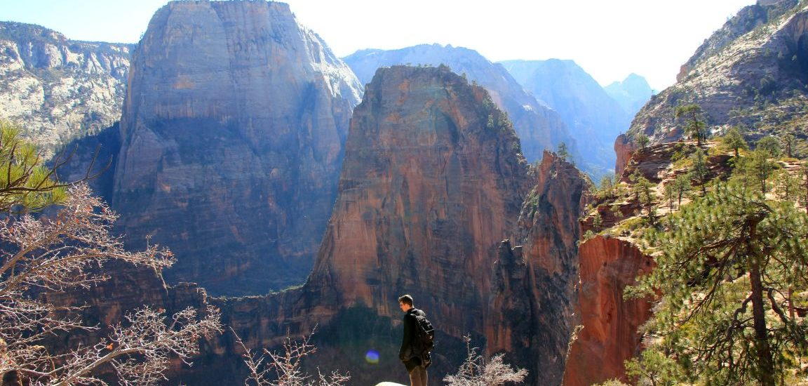 zion angels landing viewpoints