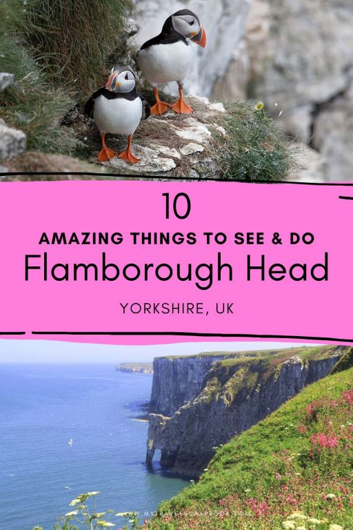 There are many wonderful things to do at Flamborough Head in Yorkshire! Located on the Yorkshire Coast, Flamborough Head has playful puffins, secret sea caves, breath-taking cliff walks, friendly seals and gorgeous sea arches. Click here to plan the perfect trip to Flamborough Head and find out everything you need to know for your visit to Flamborough Head. Also includes things to do near Flamborough such as Bempton Cliffs and where to stay on Flamborough Head.